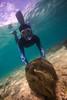 Giants (PacificKlaus) Tags: philippines diving ocean underwater tridacnagigas tridacna giantclam bolinao mollusk