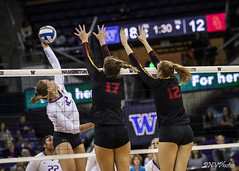 UW USC-FT4I6562 (Pacific Northwest Volleyball Photography) Tags: volleyball ncaa washington usc uwhuskies seattle pac12 pac12vb
