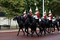 Horse Guards Parade (Juliotrlima) Tags: horseguardsparade trocadaguarda buckinghampalace london londres uk reinounido unitedkingdom inglaterra england westminster canon thehouseholdcavalrymuseum europa europe vacation férias