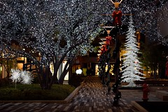 (l i v e l t r a) Tags: df f14 nikkor decorations walkway outdoor nighttime brick glow christmas design