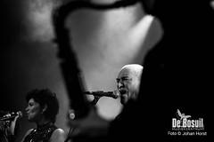 2017_10_28 Bosuil Battle of the tributebandsJOE_6825-Johan Horst-WEB