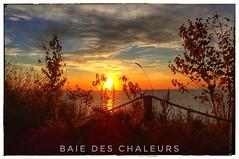 En route vers la Gaspésie (clamato39) Tags: sunrise leverdesoleil ciel sky gaspésie provincedequébec quebec canada sun soleil