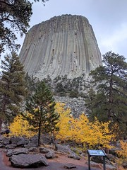 Wyoming Devil's Tower IMG_20171002_123245 (ianw1951) Tags: usa wyoming columnarjointing phonolite igneousrocks geology