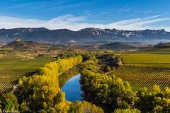 La Rioja apetece... (Charo R.) Tags: la rioja otoño naturaleza viñedos castillo rio ebro españa paisaje cielo nubes