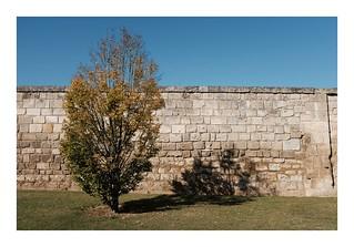 Devant le mur...