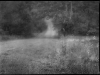 rural lane, soft focus, West Rockport, Maine, Mamiya 645 Pro, mamiya sekor 145mm f-4, Ilford FP4+,  Moersch Eco Film Developer, mid October 2017
