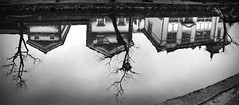 Reflejos en Kurashiki (Sacule) Tags: 松山市 kurashiki bikan canal reflection reflejo water river agua casa arbol house tree blackandwhite blancoynegro contrast pasted panoramic panorama japan asia nippon east wide cloudy canon 600d sigma1770 photoshop japon okayama old town honsu