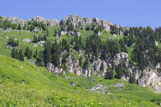 Sea Stone Ridge