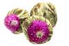 Green tea (Magda Banach) Tags: colors green greentea macro nature