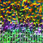 Garden Flowers thumbnail