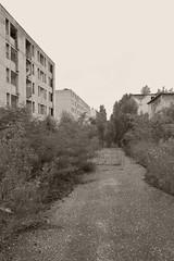 _MG_6627 (daniel.p.dezso) Tags: kiskunmajsa laktanya orosz kiskunmajsai majsai former soviet barrack elhagyatott urbex abandon abandoned military base militarybase