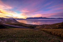Le petit train (Valentin le luron) Tags: 20171105 lavaux vaud léman montagne train unesco bourg en ciel aube nature vigne campagne paysage automne o