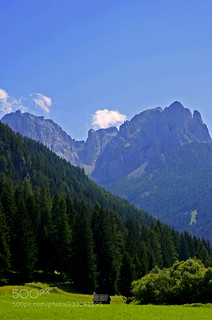 Day 10 - Just a Vertical Landscape