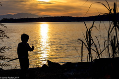 Sunshine Coast.jpg (jamiepacker99) Tags: october 2017 family sunshinecoast fall bc canada boy lostboy flower silhoutte coast beach sunset canoneos6d canonef24105mmf4lisusmlens dusk child
