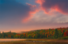 Connery Pond - Adirondack S.P - New York State (~ Floydian ~ ) Tags: henkmeijer photography floydian newyorkstate connerypond lakeplacid adirondackstatepark autumn colors colours colorful colourful tree trees fog mist pond clouds sunrise morning dawn american landscapes landscape canon canon1dsmarkiii canoneos1dsmarkiii