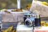 Vitomatic IIa (jah32) Tags: camera cameras german voigtländer vintage vintagecamera rangefinder 35mm brick bricks windows window leaves inmybackyard