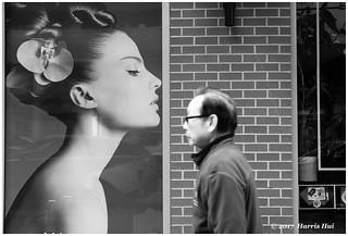 KISS (on the forehead) - Abbott Street XP7226e