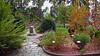 "Orta S. Giulio - Sacro Monte - il ""Giardino dei Semplici"" (frank28883) Tags: ortalake ortasangiulio sacromonte giardino giardinobotanico lacdorta ortasee lastricato"