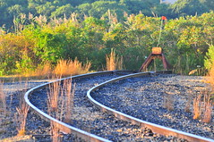 End of the Long Island Rail Road (Triborough) Tags: ny newyork suffolkcounty easthampton montauk lirr longislandrailroad