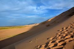 En el Gobi. (Victoria.....a secas.) Tags: mongolia gobi desierto desert dunas dunes
