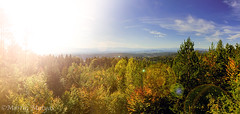 autumn landscape (Martin.Matyas) Tags: