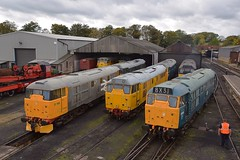 The scene on Wansford Shed, at noon. I don't think I ever saw this many 31s together in the same place, even back in the day. Nene Valley Railway Class 31 Gala. 13 10 2017 (pnb511) Tags: train diesel loco locomotive networkrail class31 trains diesels locos locomotives nenevalleyrailway dieselgala 31108 31465 d5580 31162 31453 31285 31452 31459 31271 railway track points