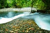Oblivion days (Takeuchi@photo) Tags: nature stream river forest leaf autumn nikond750 tamron2875mmf28 japan yamagata oguni 日本 滝 山形