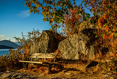 Whytecliff Park - West Vancouver (SonjaPetersonPh♡tography) Tags: whytecliffpark westvancouver westcoast shoreline shore rocks water vancity vancouver districtofwestvancouver bc bcparks park waterfront waterscape nikond5200 nikon beach scenic scenery landscape viewpoint view autumncolours lookout bench trails britishcolumbia canada howesound