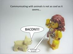 "Picture 0366 (Nick ""Nightstalker"") Tags: afol brickwarriors saberscorpion brickforge lego"
