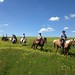 """Horse Trail Ride in Transylvania (10) • <a style=""""font-size:0.8em;"""" href=""""http://www.flickr.com/photos/131242750@N08/37263959464/"""" target=""""_blank"""">View on Flickr</a>"""