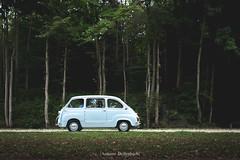 Fiat 600 Multipla (antoinedellenbach.com) Tags: worldcars classic car france canon eos automotive classiccars automobiles vintage automobile historictrophy festival lightroom usm coche chantilly artelegance richardmille oise chateau castle concoursdelegance parade legend fiat fiat600 multipla