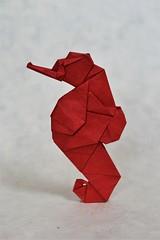 Seahorse (Gen Hagiwara) (Antoine S. (origoku)) Tags: origami paper papier papiroflexia paperfolding pliage pliagedepapier hagiwara gen antoine scherer papercraft paperart craft art lokta lamali