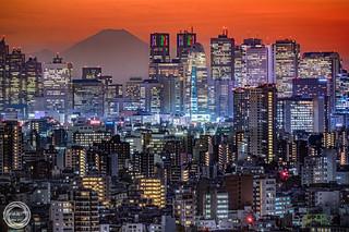 Shinjuku Skyscrapers with Mt. Fuji