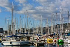 A touch of colour... (boisderose) Tags: bacinosacchetta trieste 2017 mare sea cielo sky nuvole clouds golfo gulf barche boats boisderose blu blue azzurro lanterna oldlighthouse