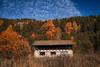When Autumn Calls (Fuji and I) Tags: bulgaria blagoevgrad rila mountains hiking nature autumn fall travel hikinh alexarnaoudov fujix