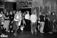 2017 Bosuil-Het publiek bij Steady State 13-ZW