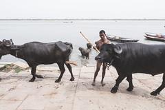 Varanasi - Ghats-2