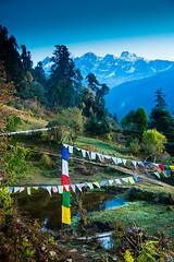 Gocha-la trek in Sikkim, India (David Ducoin) Tags: asia dzongri gochala green hike himalaya india kangchenjunga landscap landscape mountain nationalpark prayerflag sikkim trek gangtok in