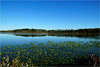 Blue Rest (Hindrik S) Tags: lake mar see meer lac blue blauw blau water wetter leau wasser reflection reflectie refleksje wjerspegeling weerspiegeling landscape lânskip scenery panorama sky bluesky loft clear helder canada kanada waterford nature natuur natuer schepping schöpfung skepping creation sonyphotographing sony sonyalpha a57 α57 slta57 tamron tamronspaf1750mmf28xrdiiildasphericalif 2017 ontario scenicsnotjustlandscapes amount
