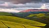 Draaiberg Drama (Panorama Paul) Tags: paulbruinsphotography wwwpaulbruinscoza southafrica westerncape greyton overberg canolafield flowers curves clouds mountains winter nikond800 nikkorlenses nikfilters sunrise