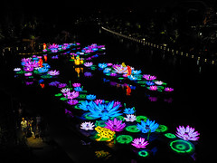 Mid-Autumn Festival (elenaleong) Tags: gbblanternlights midautumnfestival lightup gardenbythebay midautumnlights 中秋节 leong elenaleong
