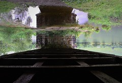 IMG_9074 (olivieri_paolo) Tags: supershots abstract bridge water grass