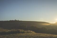 Morning (sdrusna79) Tags: morning mattina nebia nikon