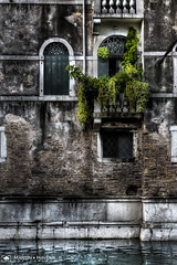 Venetian Balcony (M:J:H:Photography) Tags: hdr venice venetian balcony desaturated vibrant canal italy waters edge ripple door window shutter green foliage plants