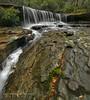 up the creek (donnnnnny) Tags: narrabeen oxfordfalls waterfall urban falls nsw australia