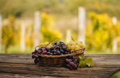 Almost wine (Inka56) Tags: crazytuesdaytheme almost beautifulgeometry flickrfriday grape basketwithfruits woodtable vineyard 7dwf fruit