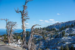 2017 Pac NW Lassen Volcanic-118 (Michael L Coyer) Tags: parks nationalparks usnationalparks unitedstatesnationalparks lassenvolcanicnationalpark lassen lassenvolcanic lassenvolcanicnatlpark mountain mount wilderness forest
