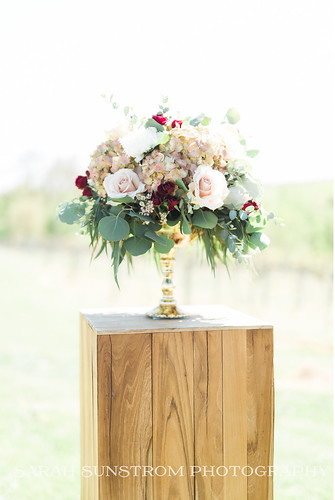 "Antique Hydrangea Ceremony Arrangement at Cedar Ridge Winery by Unique Events • <a style=""font-size:0.8em;"" href=""http://www.flickr.com/photos/81396050@N06/37710287886/"" target=""_blank"">View on Flickr</a>"