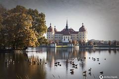 JB7_7190 (john_berg5) Tags: castle dresden city lake schloss moritzburg landscape nikon d750