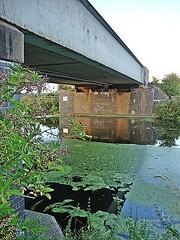 RIVER ANCHOLME NORTH OF BRIGG (tony.bullen58) Tags: bridge water river